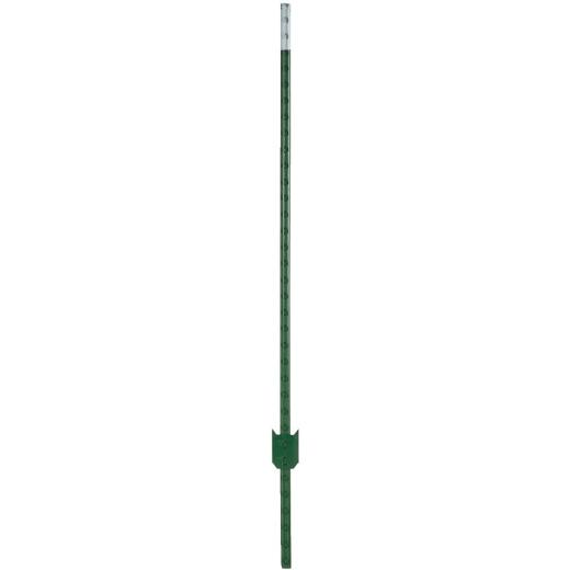 Franklin Industries 7 Ft. Steel 1.25 Lb/Ft. Fence T-Post